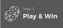 How to Play Online Casino Games Singapore